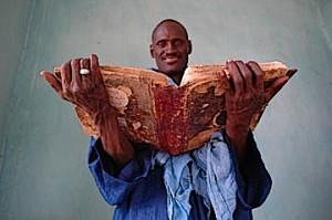 Wissen aus Timbuktu, der weltweit ältesten Universität